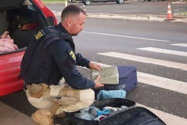 Polícia prende casal com drogas escondidas na bagagem da filha de 5 anos