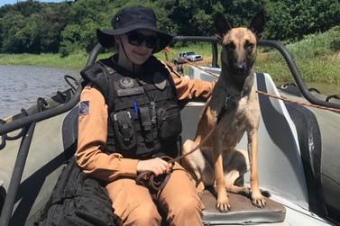 Cães farejadores dinamizam o patrulhamento do Batalhão de Polícia de Fronteira