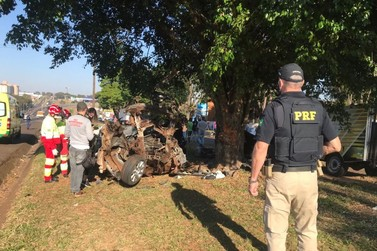 Motorista de 26 anos morre ao colidir veículo contra árvore na BR-277