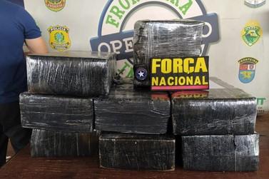 Mil caixas de anabolizantes e mais de 220 kg de maconha são apreendidos na PIA