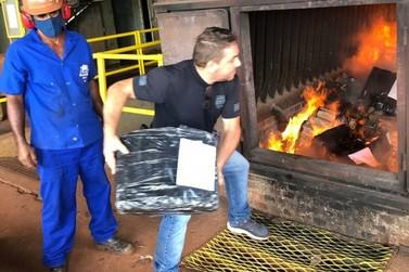 Em primeira incineração do ano, mais de 4,5 toneladas de maconha são destruídas