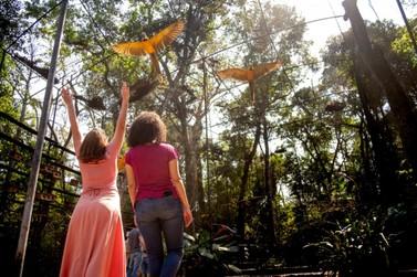 Parque das Aves espera receber mais de 6 mil visitantes no Carnaval deste ano