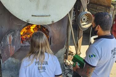 Polícia incinera 5 quilos de drogas apreendidas em Guaratuba durante o verão