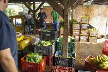 Colégios estaduais continuam recebendo alimentos de agricultores de Guaratuba