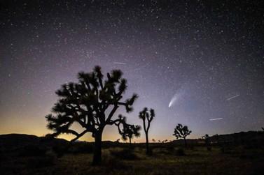 Cometa Neowise poderá ser visto até dia 30 de julho