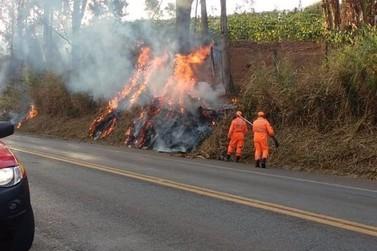 Corpo de Bombeiros de Guaxupé controla onze focos de incêndio na BR-491