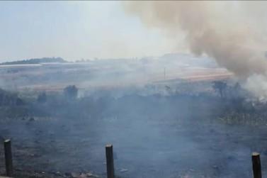 Incêndio criminoso atinge mata ciliar do Rio Guaxupé
