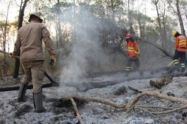 Professor do IFSULDEMINAS participa de monitoramento de queimadas no Pantanal