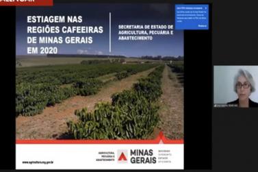 Seca nas regiões Sul e Sudoeste pode comprometer a produção de café em 2021