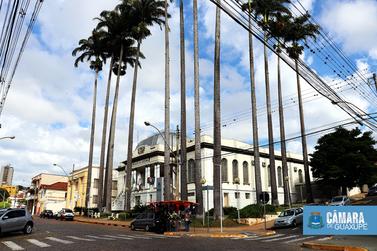 Corte de palmeiras imperiais é adiado em Guaxupé