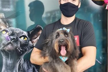 Pandemia: O que fazer com o seu pet em casa?