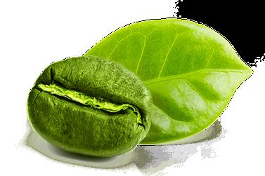 10 benefícios do óleo de café verde para sua pele