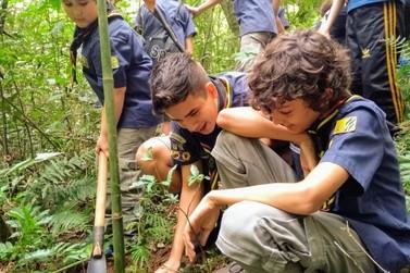 Mutirão Nacional de ecologia dos Escoteiros é realizado em Igrejinha