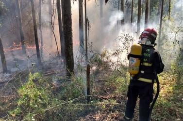 Bombeiros Voluntários de Igrejinha atendem 6 incêndios florestais em uma semana