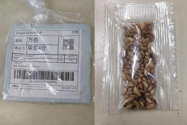 Sementes da China: pacotes misteriosos alertam para cuidado com dados pessoais