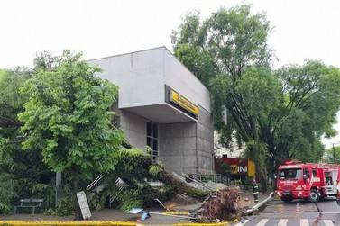 Temporal causa alagamentos, derruba árvores e provoca estragos em Igrejinha