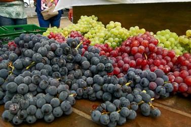 Feira da Uva de Igrejinha acontece até o final de fevereiro
