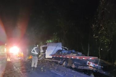 Motorista de caminhão perde controle e bate em árvore na ERS-020 em Igrejinha