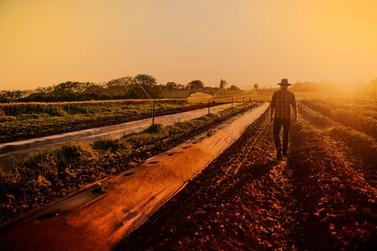 Crédito para quem nunca para: Cresol reforça apoio ao agronegócio