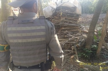 Policiais Ambientais do 3º BABM efetuam averiguação da flora em Igrejinha