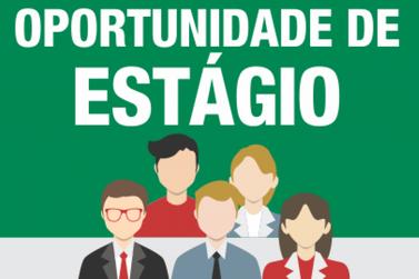 CIEE Jacarezinho anuncia vagas de estágio