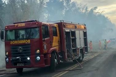 Incêndio interdita rodovia entre Jacarezinho e Santo Antônio da Platina