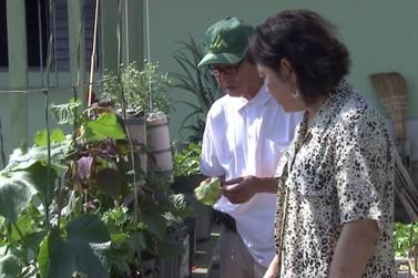 Servidora pública e agricultor aposentado fazem sucesso com vídeos sobre horta