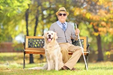 13 de janeiro - Dia Nacional do Cego