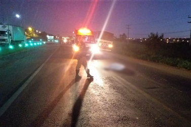Atropelamento em rodovia causa uma morte em Siqueira Campos