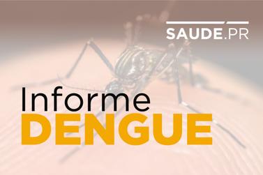 Em menos de um ano Paraná soma 212.074 casos de dengue