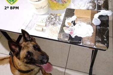 Operação Jacarezinho Segura apreende grande quantidade de drogas