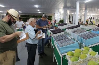 Valinhos anuncia adiamento da 72ª Festa do Figo para 2022