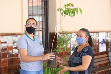Ação especial coleta óleo e lixo eletrônico e doa mudas para moradores