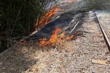 Linha férrea pega fogo no bairro Ponte Preta nesta sexta-feira (24)