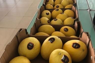 Louveira entrega kits de hortifrutis para 6 mil alunos da Rede Municipal