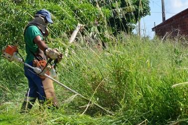 Prefeitura de Lucas do Rio Verde reforça campanha de limpeza de lotes