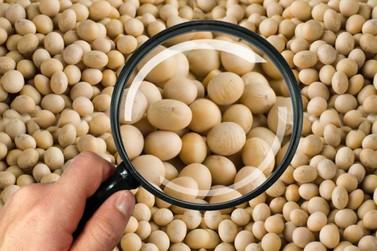 Operação Gran Família investiga venda fraudulenta de sementes em Mato Grosso