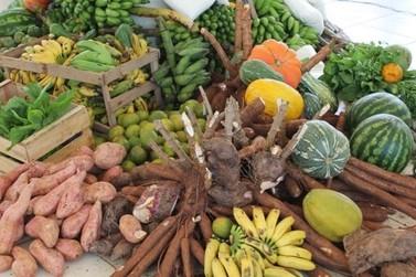 Agricultura familiar de Mato Grosso receberá desconto do PRONAF este mês