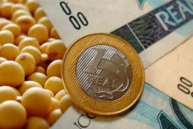 Seguro rural paga quase R$ 1 bilhão em indenizações para safra do soja