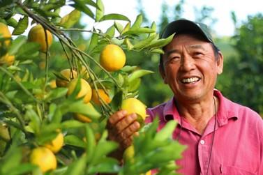 Agronegócio gera mais de 75 mil empregos no primeiro semestre