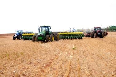 Agricultores de Lucas do Rio Verde estão cautelosos com nova safra de soja