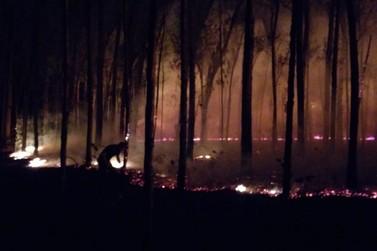 Incêndio pode ter sido ação criminosa, diz Corpo de Bombeiros