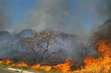 R$ 23,8 milhões serão destinados para MT no combate as queimadas e desmatamento