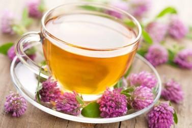 Conheça as propriedades do chá que ajuda a tratar o estresse e a ansiedade