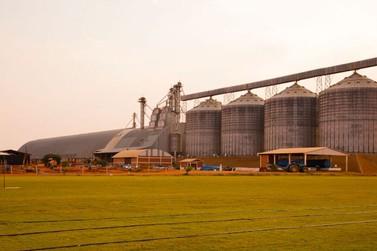 Mato Grosso: mesmo abaixo da média histórica, safra 2020 pode ser 2% maior