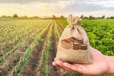 Em ajuda a produtores, governo anuncia prorrogação de parcelas de financiamentos