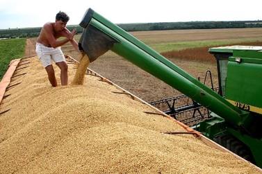 Conab projeta em 8% o crescimento da safra de grãos