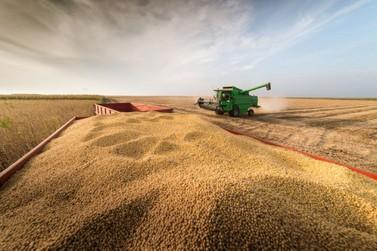 Produção de grãos sinaliza recorde final de 253,7 milhões de toneladas