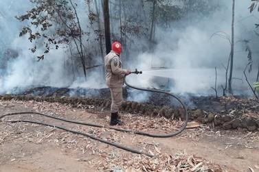 Ação integrada combate incêndios criminosos no Parque dos Buritis