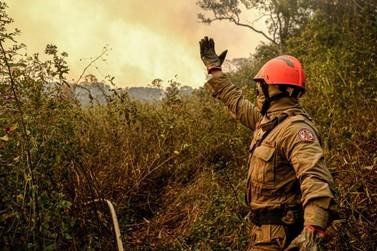 Bombeiros alertam para riscos do uso indevido de técnicas de combate a incêndios
